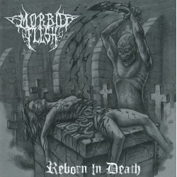 "Morbid Flesh - ""Reborn in Death"" CD"